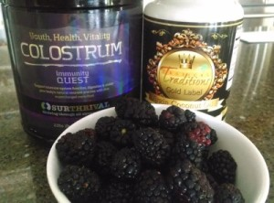 Blackberry Colostrum