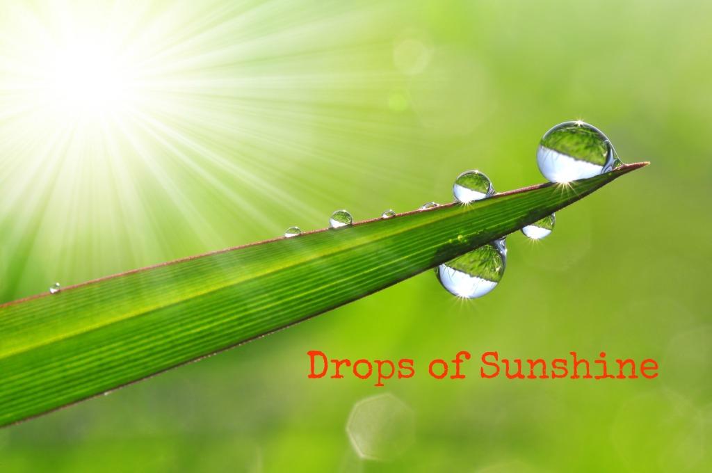 Drops of Sunshine