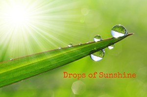 Drops of Sunshine